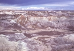 Painted Desert and Petrified Forest